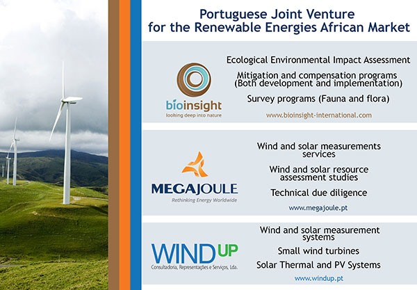 Portuguese Joint Venture For The Renewable Energies African Market